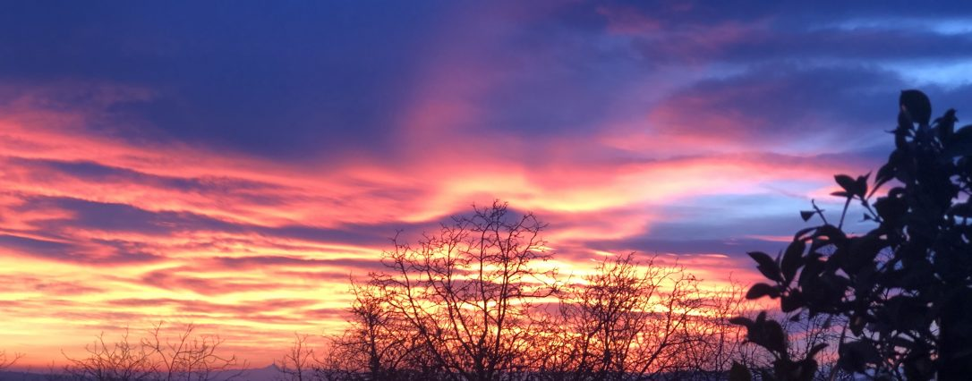 Red sky at the night sheperds delight…