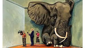L'elefante nella stanza