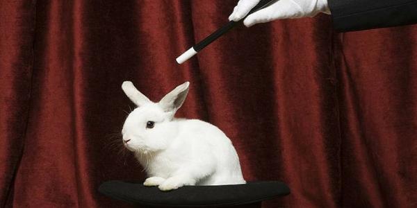 Il coniglio dal cilindro